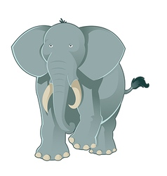 Gray elephant vector image vector image