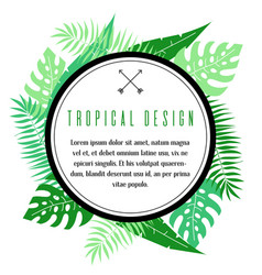 tropical frame with palm leaves vector image