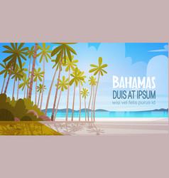 Bahamans sea shore beach beautiful seaside vector