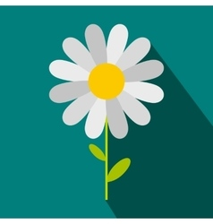 Chamomile icon in flat style vector