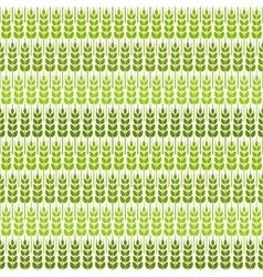 green wheat seamless pattern vector image
