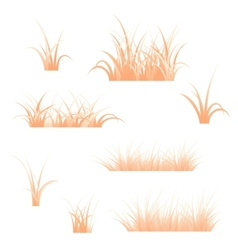 Orange grass vector image vector image