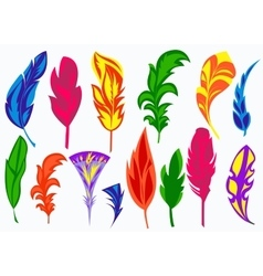 Set isolated colored feathers vector