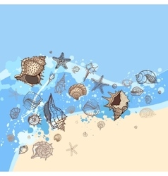 Seashells with sand background vector image
