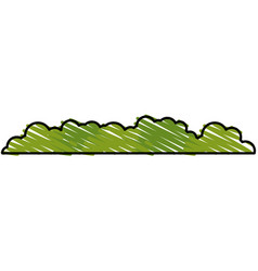 Bush landscape isolated icon vector