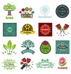 Biggest collection of logos of flower and vector
