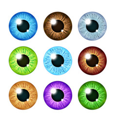 realistic multi colored eyeball iris pupils set vector image