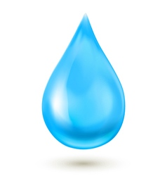 Water drop isolated on white background EPS 10 vector image