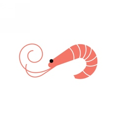 Shrimp icon prawn vector