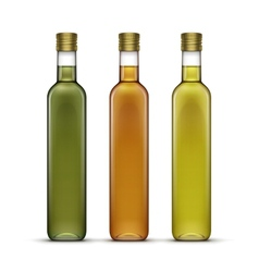 Set of olive or sunflower oil glass bottles vector