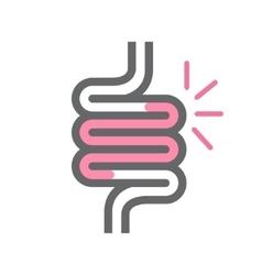 intestine symbol or icon vector image