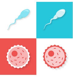 Sperm and ovum or egg set in a flat style isolated vector
