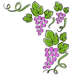Abstract line grape frame vector