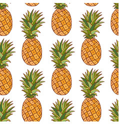 pineapples pattern hand drawn seamless texture on vector image