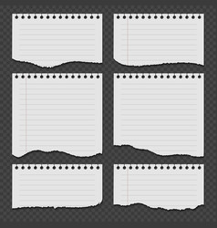 Notebook papers with torn ripped edge set vector