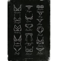 Underwear poster classic chalk vector