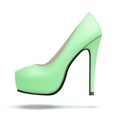 Mint vintage high heels pump shoes vector