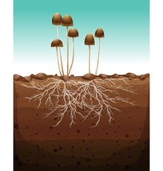 Fresh mushroom growing on land vector