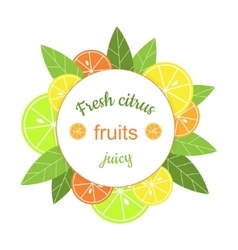 Round frame with citrus banner with vector