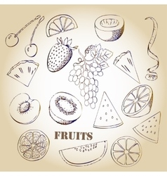 Background with fruit-03 vector image vector image