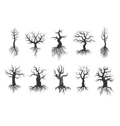 old tree silhouettes with roots set vector image vector image