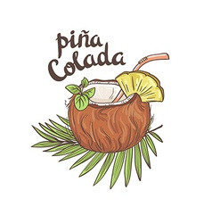 Tropic coconut cocktail Hand drawn vector image
