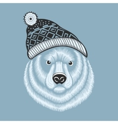 bear hipster in knitted hat with vector image