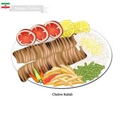 Chelow kabab the national dish of iran vector
