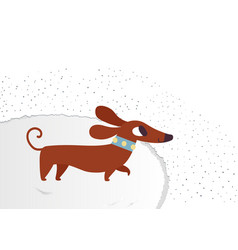 Cute dachshund funny portrait of a dog vector