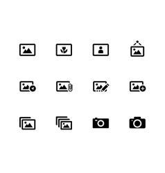 Photographs and Camera icons on white background vector image