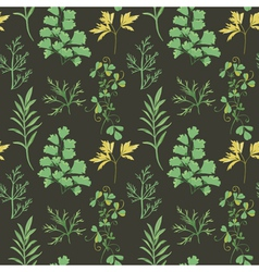 Floral background - leaves and herbs vector