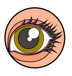Beauty eye image vector