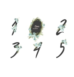 Floral crocus collection numbers in vintage color vector image vector image