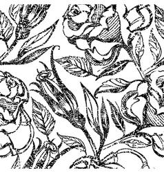 Flower rose seamless 3 2 vector