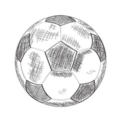 sketch of a soccer ball vector image vector image