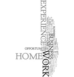 work at home with no experience text word cloud vector image vector image