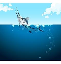 Swordfish swimming in the ocean vector