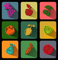 Fruit flat icon vector