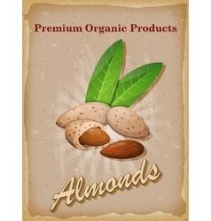 Almonds vintage poster vector image