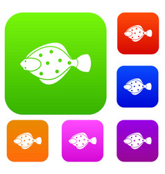 Flounder fish set collection vector