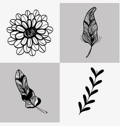 Set rustic flowers with leaf and branches and vector