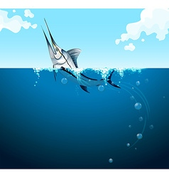 Swordfish swimming in the ocean vector image