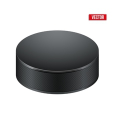 Black Hockey puck vector image