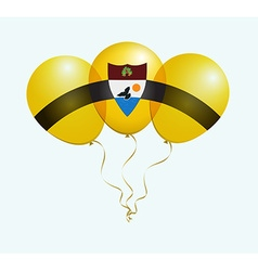 Balloons in as liberland national flag vector