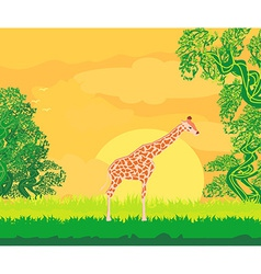 Giraffe in jungle landscape vector