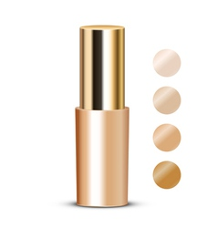 Foundation with swatches vector