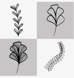 Set branches with leaves and flower with petals vector