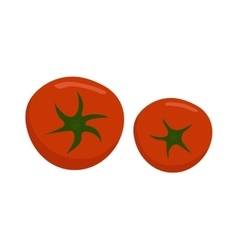 Tomato isolated vector image vector image