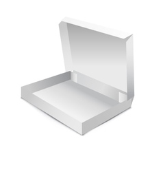 White gift carton box vector image