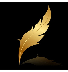 Golden feather on black vector